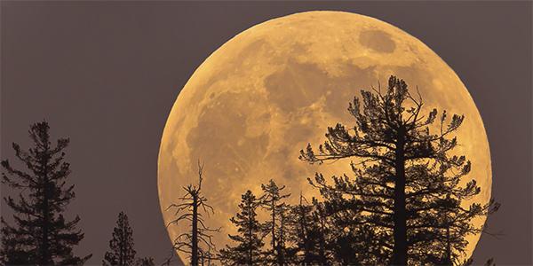 Pogled na super polno Luno, ki vzhaja je nepozaben.